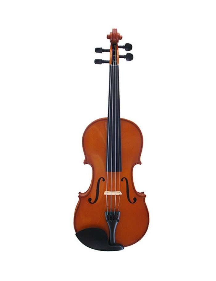 MLS 120 Violin Outfit 1/2 Size