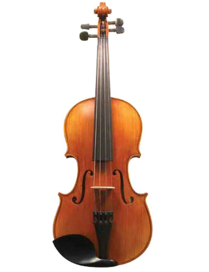 MLS 130 Apprentice Collection Full Size Violin Outfit